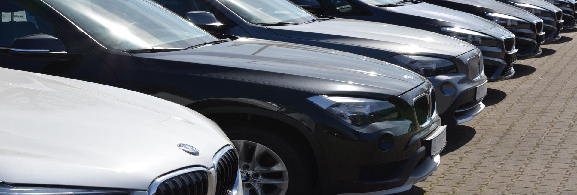 As Automobile Stärk Gmbh An Und Verkauf Von Jahres Und
